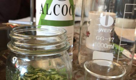 Quel alcool utiliser pour alcoolature / teinture mère ?