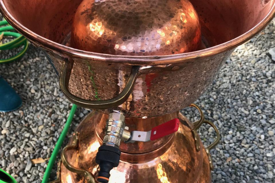 Formation Distillation