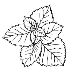 Matériel culture des plantes